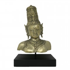 RAMA HEAD ON STAND COLD COLOR